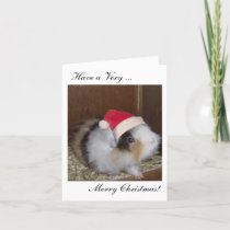 Have a Guinea Merry Christmas card! Holiday Card