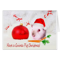 Have a Guinea Pig Christmas Card