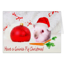 Have A Guinea Pig Christmas Novelty Design Card