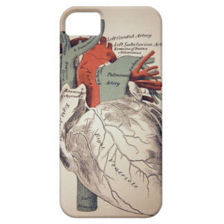 Have a Heart iphone Case iPhone 5 Case