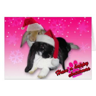 Have A Hoppy Christmas - Rabbit Xmas Card