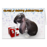 Have A Hoppy Christmas W/ Pika - Rabbit Xmas Card
