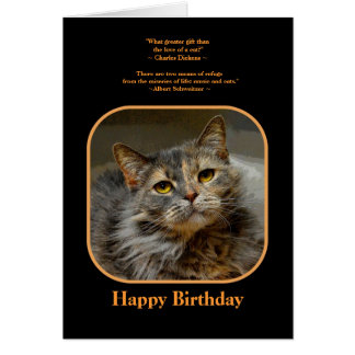 Have a meow-velous Birthday Tortoiseshell Cat Greeting Cards