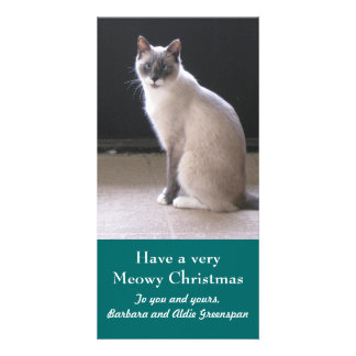 Have a Meowy Christmas Cat Pet Holiday Photo Card