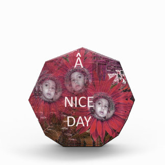 Have a Nice Day Award