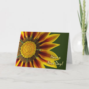 Have a nice day cards zazzle have a nice day greeting card gazania flower card m4hsunfo
