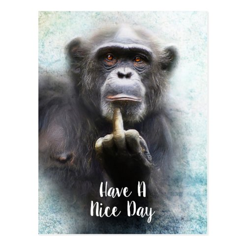 Have A Nice Day Middle Finger Offensive Funny Ape Postcard