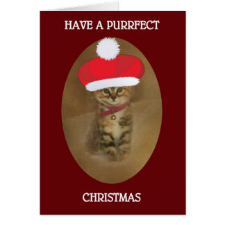 HAVE A PURRFECT KITTY CHRISTMAS CARD