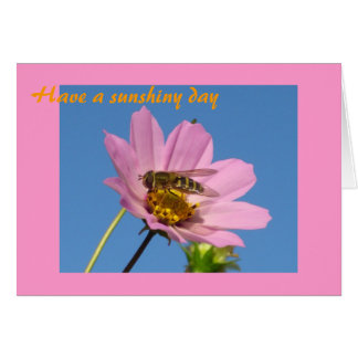 Have a sunshiny day card