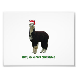 Have an alpaca Christmas Photographic Print