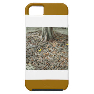 Have BABIES: SEEDS to continue ROOTS ANCESTORY iPhone 5 Cover