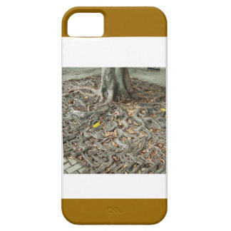 Have BABIES: SEEDS to continue ROOTS ANCESTORY iPhone 5 Covers