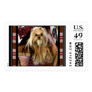 Have Doggie Will Travel Postage Stamps