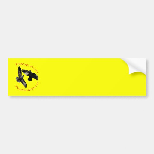 Have Fun...Raven Wisdom Car Bumper Sticker
