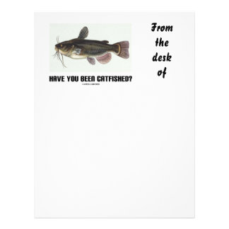 Have You Been Catfished? (Catfish Illustration) Letterhead Template