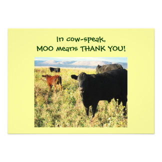 Have You Herd? Calves - Western Thanks Baby Gift Invitations
