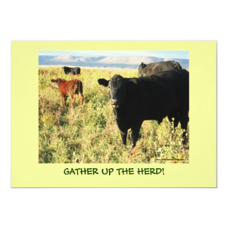 Have You Herd? Cattle Calves Western Party Shower Card