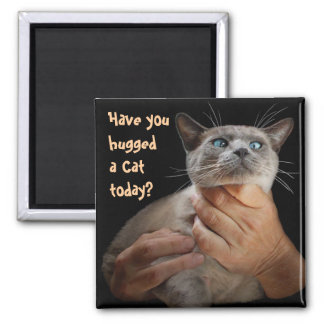 Have you hugged a Cat today? 2 Inch Square Magnet