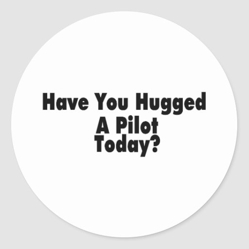 Have You Hugged A Pilot Today Stickers