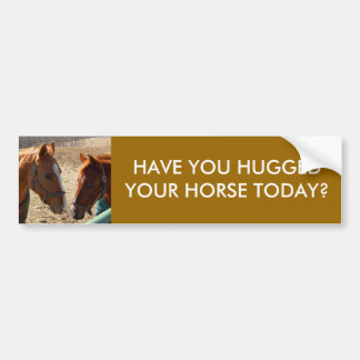HAVE YOU HUGGED - bumper sticker