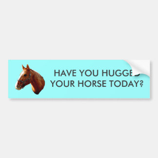 HAVE YOU HUGGED - bumper sticker -