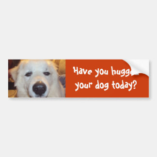 Have you hugged your dog today? bumper sticker