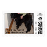 Have you hugged your Newfie today? Stamps