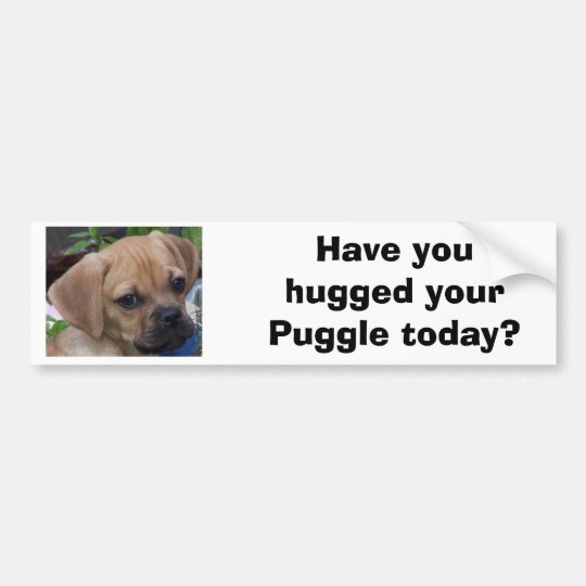 Have you hugged your Puggle today? Bumper Sticker