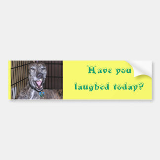Have you laughed today? bumper sticker