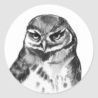 Have you saw my stupid brother - burrowing owl sticker
