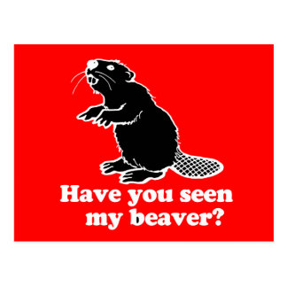 HAVE YOU SEEN MY BEAVER? POSTCARD