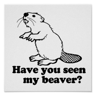 HAVE YOU SEEN MY BEAVER? POSTER