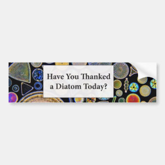 Have You Thanked a Diatom Background Bumper Sticker