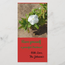 Have yourself a peaceful christmas holiday card