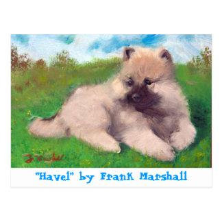 Havel por la postal de Frank Marshall