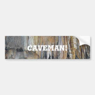 Haven of Deities Spectacular Cavern Forms Bumper Sticker
