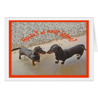 Havent we met before?Humour Cards