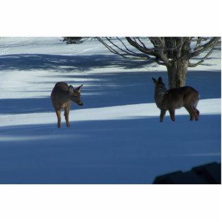 Havenwood Deer Cutout