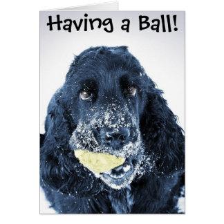 Having a Ball! Card