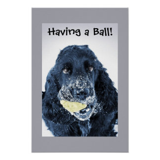 Having a Ball! Poster