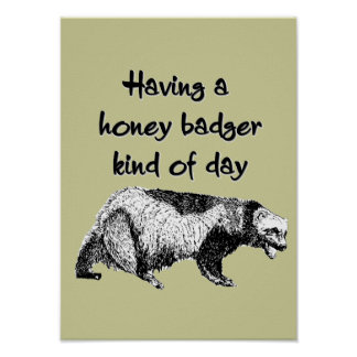 Having a honey badger kind of day poster