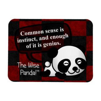 Having common sense makes you a genius magnet
