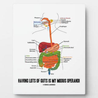 Having Lots Of Guts Is My Modus Operandi Display Plaque