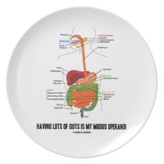 Having Lots Of Guts Is My Modus Operandi Party Plates