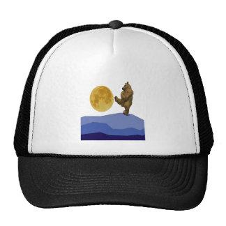 HAVING SOME FUN TRUCKER HAT