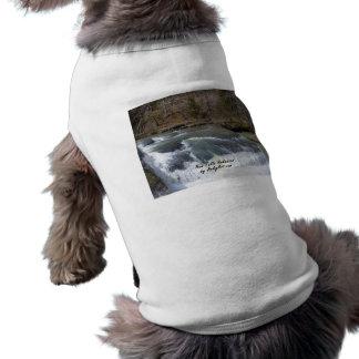Haw Falls 2 Shirt