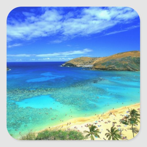 ¡Hawaiana de la playa de la bahía de Hanauma! Calcomanías Cuadradas Personalizadas