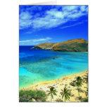 ¡Hawaiana de la playa de la bahía de Hanauma! Tarjetas