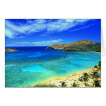 ¡Hawaiana de la playa de la bahía de Hanauma! Tarjetón