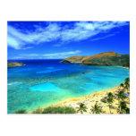 ¡Hawaiana de la playa de la bahía de Hanauma! Postal